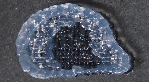 Ein Ohr aus Spinnenseide aus dem 3D-Drucker